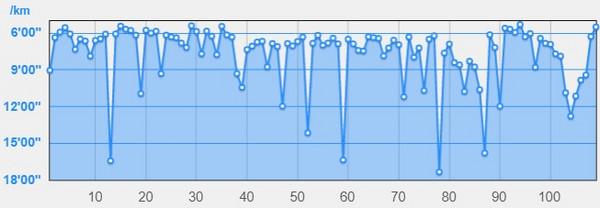 チャレンジ富士五湖(山梨県、2014年)~本栖湖を途中で折り返す短縮コース