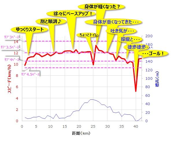 ナゴヤアドベンチャーマラソン(愛知県、2015年)