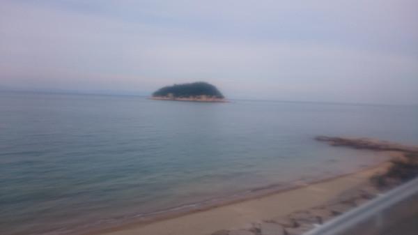 瀬戸内海タートル・フルマラソン(香川県、2015年)~厳しさと感動の島ラン