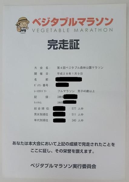 ベジタブル森林公園マラソン(埼玉県、2016年)~細かいアップダウンに耐えながら走る