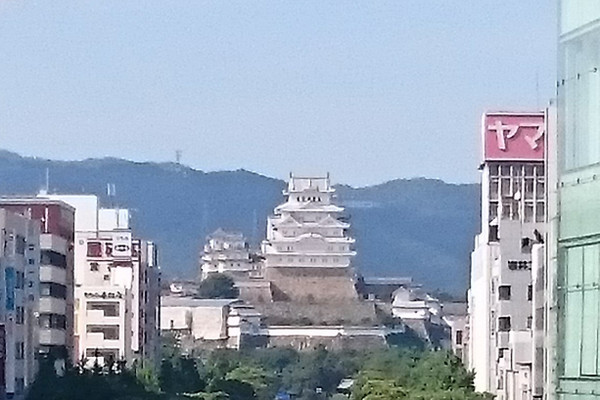 姫路城マラソン(兵庫県、2017年)~瓦と革の完走メダル