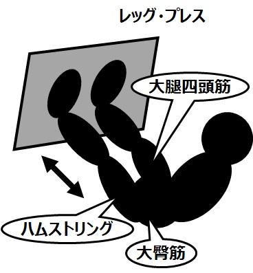 筋トレのマシンと効果(1)レッグ・プレス