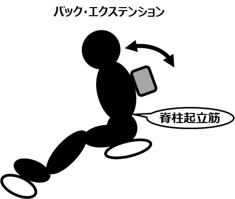 筋トレのマシンと効果(4)バック・エクステンション~腰に効きます