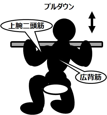 筋トレのマシンと効果(6)プルダウン