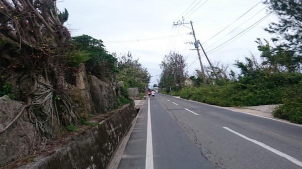喜界島マラソン(鹿児島県、2018年)~心温まる珊瑚礁の島ラン