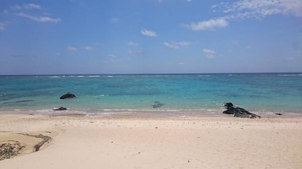 喜界島マラソンの翌日は、レンタカーで奄美観光へ(奄美大島北部、半日コース)