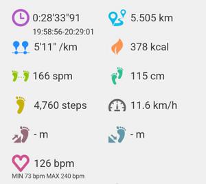 5km ペース走