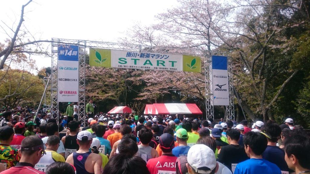 掛川・新茶マラソン2019