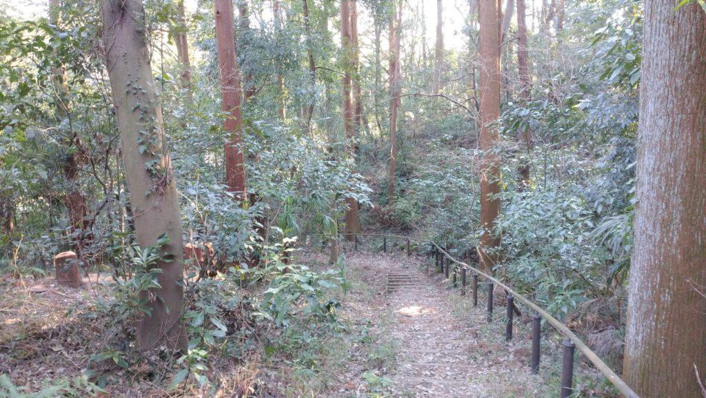 南本宿市民の森