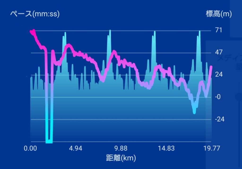 皇居マラソン(東京都、2020年12月30日)~2020年のラストラン20km